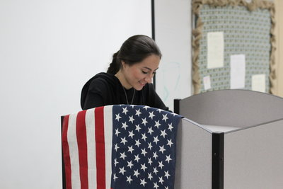 STUDENTS AT THE POLLS