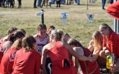 CROSS COUNTRY COMPETES AT STATE