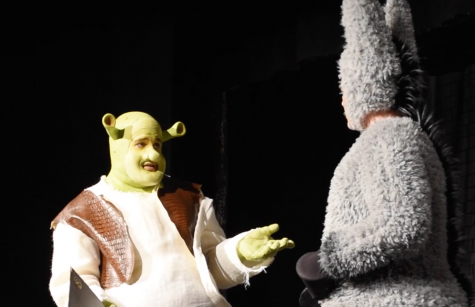 PERFORMING SHREK