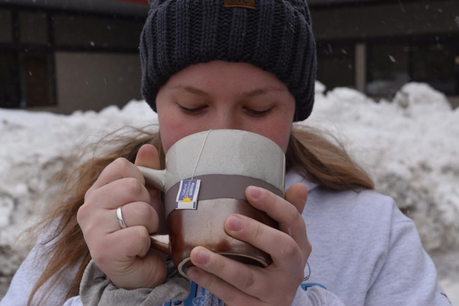 Here are some tips for staying healthy when battling the cold and flu season that plagues Sandpoint in February.