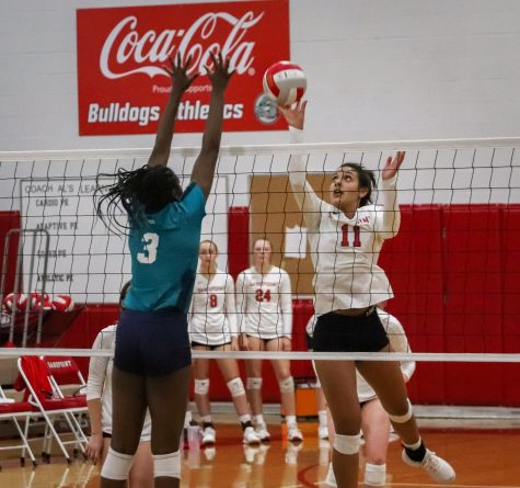 Senior Bella Philips attempts to bump the ball over the net.