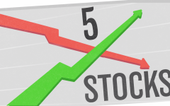 5 Successful Stocks